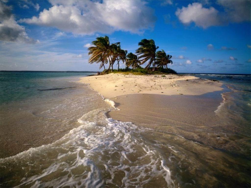 isola, palme,  mare, sole, incanto
